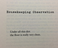 housekeeping observations by Lydia Davis
