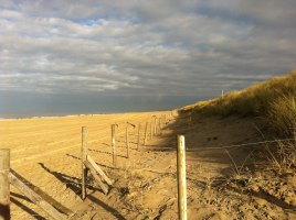 stranddreiging.jpg